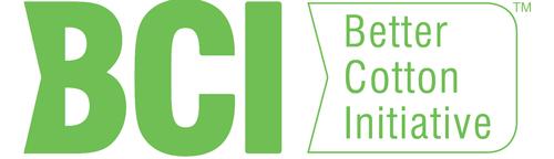 BCI Logo_web